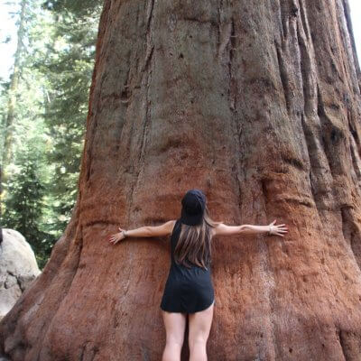 Costa Oeste: Sequoia & Kings Canyon