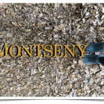 Avioneta estrellada en el Montseny