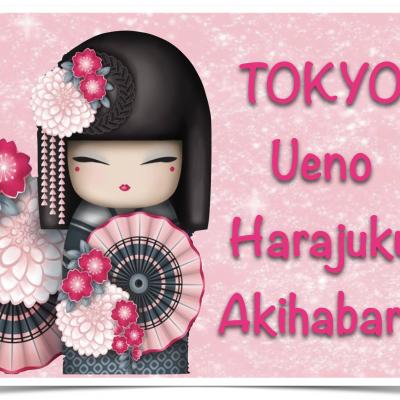 TOKYO: Ueno – Harajuku – Yoyogi Park & Meiji Jingu – Akihabara
